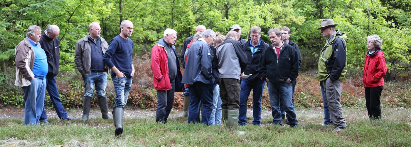 Orientering om mageskifte i Nørhede Plantage Foto: Mogens Ballegaard